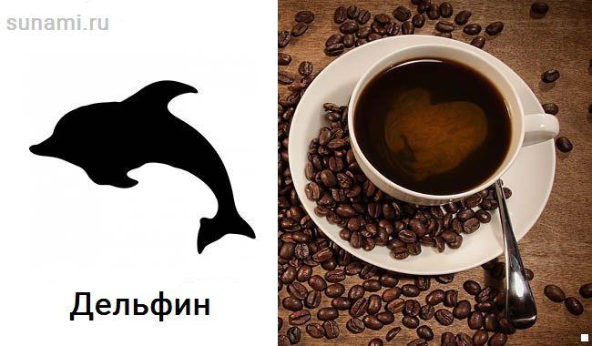 delfin-na-gusche.jpg