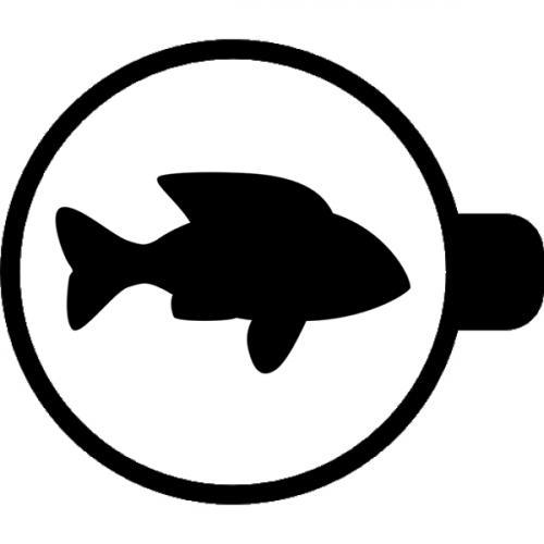 ryba-v-gadanii-na-kofe.jpg