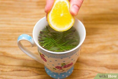 v4-460px-Make-Pine-Needle-Tea-Step-4.jpg