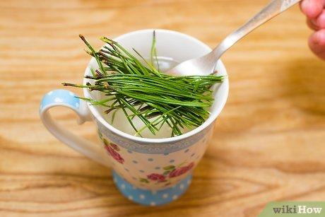 v4-460px-Make-Pine-Needle-Tea-Step-5.jpg