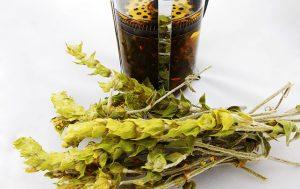 Мурсальский-чай-для-мужского-здоровья-300x189.jpg