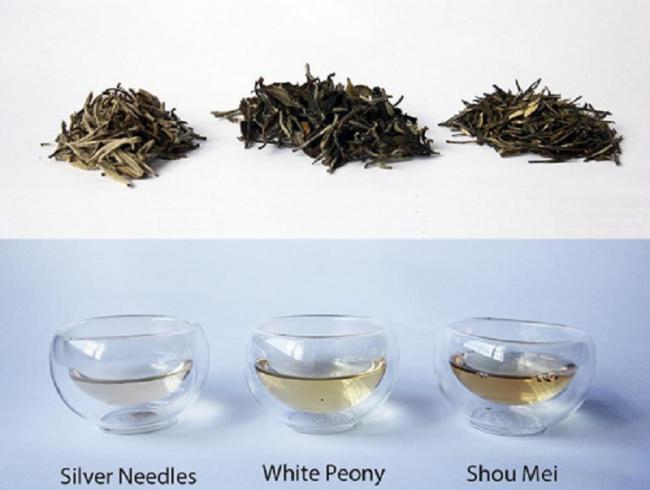 6-Популярные-виды-белого-чая.jpg