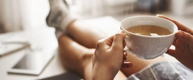 Особенности и польза чая для организма человека