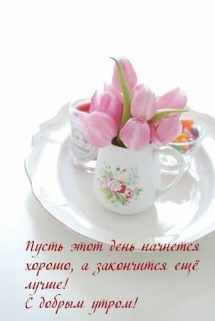 dobrogoutra_ru_3615.jpg