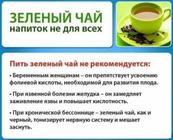 polza-zelenogo-chaya-6-e1563451070220.jpg