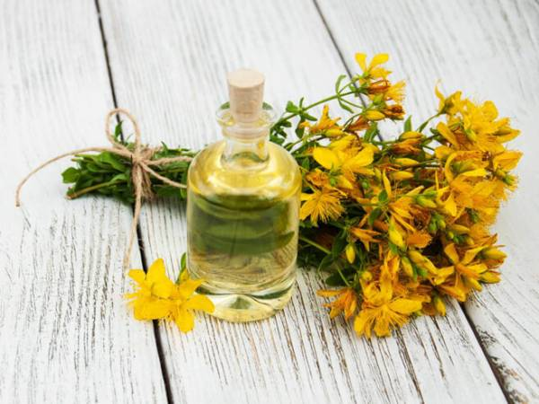 vitamins-supplements-herbs-herbs-st-johns.jpeg