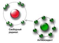 antioksidantnyj-jeffekt