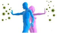 ukreplenie-immunnoj-sistemy