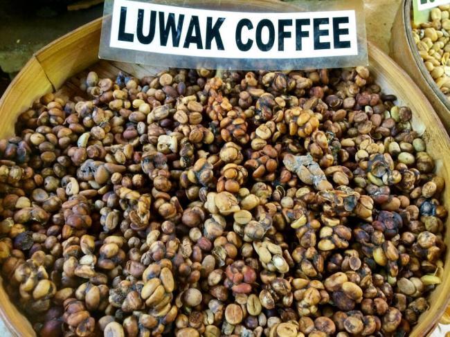 luwakkofe-6-1024x768.jpg