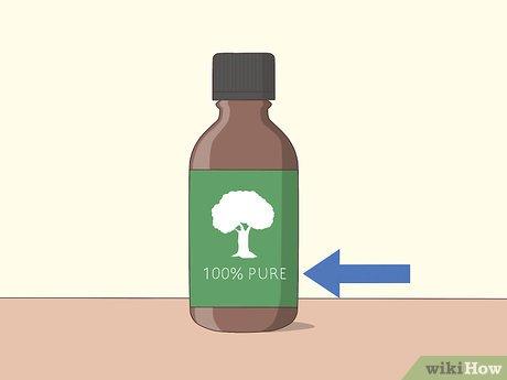 v4-460px-Use-Tea-Tree-Oil-for-Acne-Step-1-Version-2.jpg