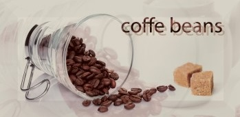 Monopole Breakfast - BREAKFAST ARABICA