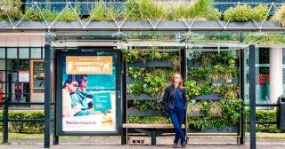 Цветочные остановки для пчел в Нидерландах