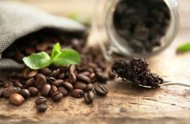 kofejnaya-gushcha-i-zhmyh-kak-udobrenie-dlya-komnatnyh-rastenij-5.jpg