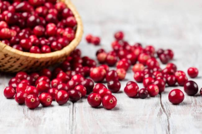 shutterstock_489262009-cranberries-dec16-e1514126172519.jpg