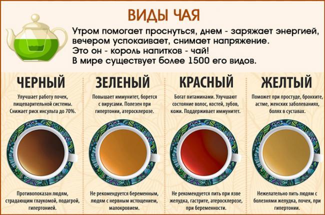 chaj-dlya-pecheni_22.jpg