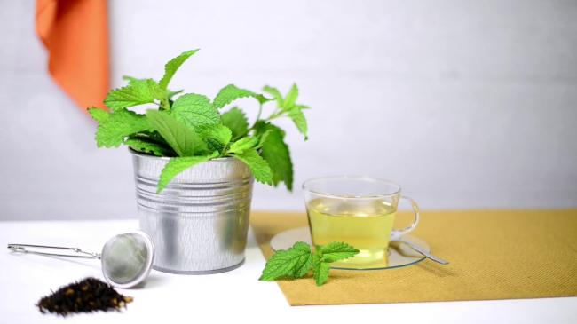 herbal-tea-with-melissa-in-a-glass-cup-a-green-napkin-on-a-light-green-wooden-table-top_s8gpjzwc_thumbnail-full01.jpg
