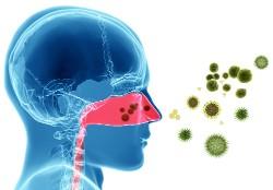 immun-bakter-infect-virus-allerg-2-deposit.jpg