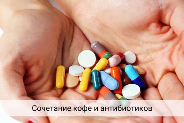 kofeiantibiotikisovmestimostkofeinastabl_57c82b16-640x427.jpg