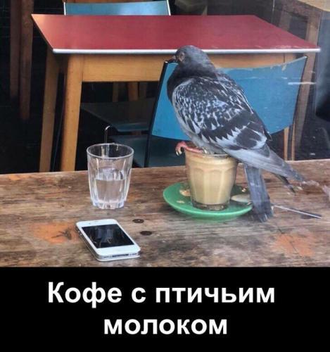 1567065084_2.jpg