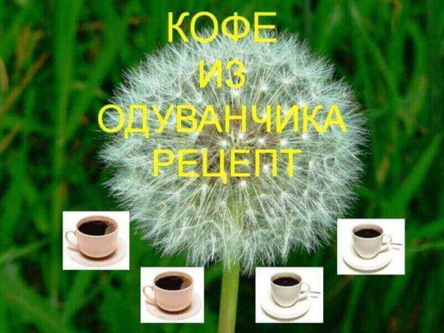 dandelion-coffee-recipe-640x480.jpg
