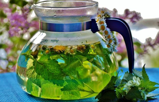 herbal-3504948_960_720.jpg