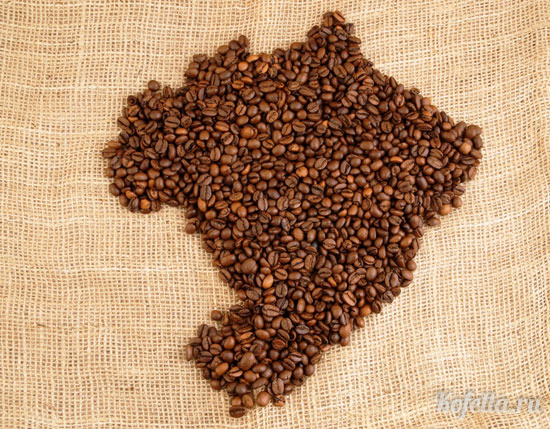 brazilskiy-kofe.jpg