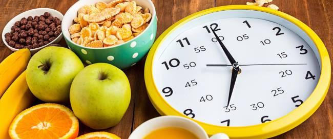 Как долго переваривается пища в желудке?